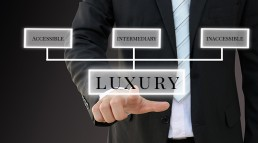 Types of luxury products